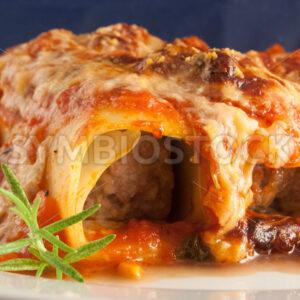 Cannelloni Frontal - Fotos-Schmiede