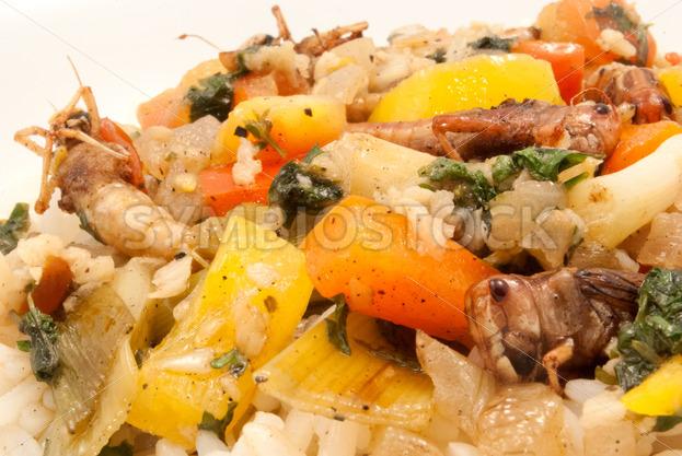 Gebratene Heuschrecken mit Gemüse auf Basmati-Reis Detail - Fotos-Schmiede