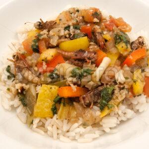 Gebratene Heuschrecken mit Gemüse auf Basmati-Reis Komplett - Fotos-Schmiede
